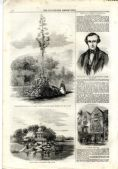 1858 ILLUSTRATED LONDON NEWS Louisiana USA THOMAS CARLYLE Civitavecchi Italy NEWSPAPER (2490)
